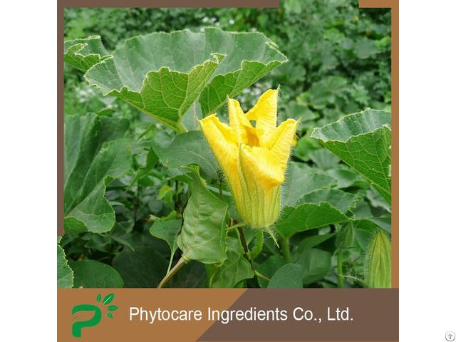 Lower Blood Pressure Prevent Cardiovascular Diseases Organic Pumpkin Seed Oil