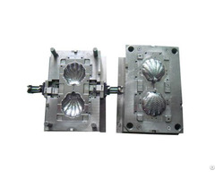 Shell Plastic Injection Mold Maker