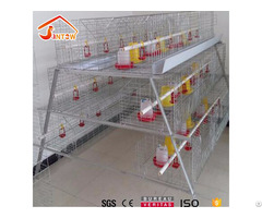 Broiler Chicken Cage Design