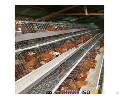 Uganda Nigeria Poultry Farm Chicken Cage