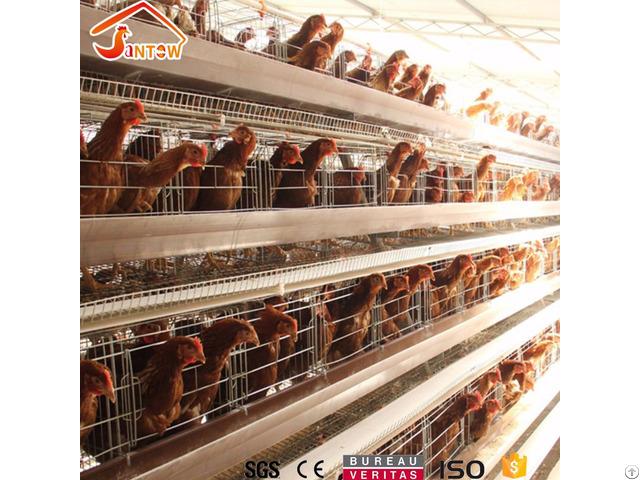 Chicken Cage System In Kenya