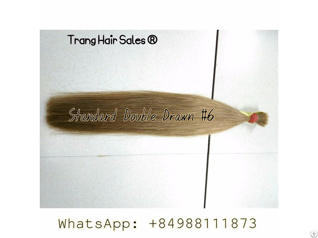 Standard Double Drawn Remy Hair Best Wholesale Price