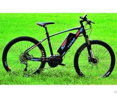 250w 36v Ceter Drive E Bike