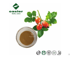 Plant Rosehip Extract Powder Polyphenols