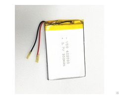 Lipolymer Battery