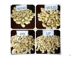 Cashew Nuts And Kernels W240 W320 Ws Lp