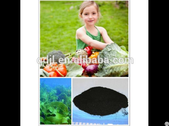 Dry Organic Fertilizer Seaweed Extract