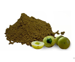 Amla Dry Powder Exporters India