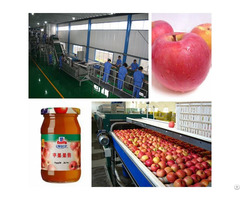 Apple Jam Processing Line