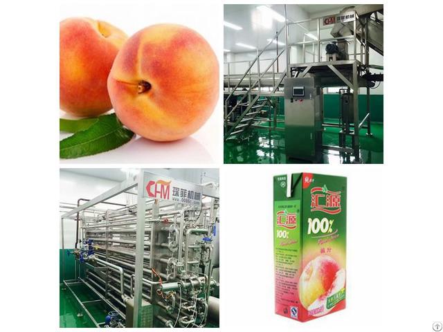 Peach Juice Processing Line