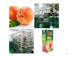 Peach Juice Processing Line