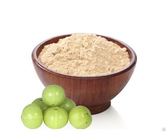 Indian Amla Powder Exporters