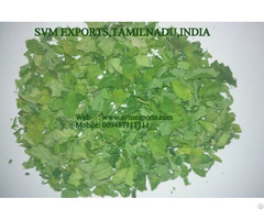 Higenic Moringa Dry Leaves Exporters India