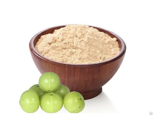 Indian Amla Powder Exporters From India