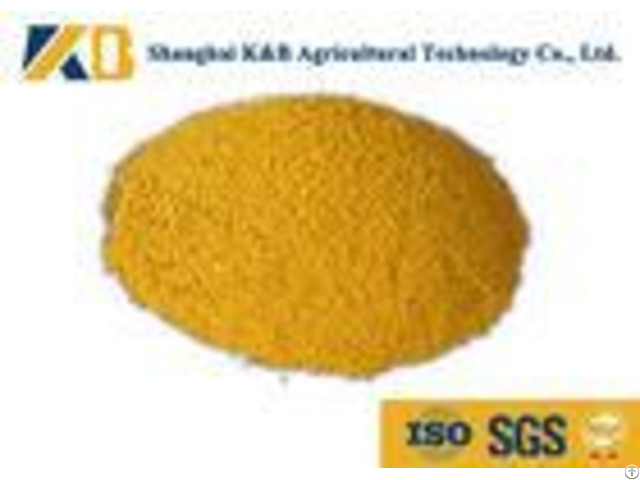 60% Content Corn Protein Powder Animal Feed Additives For Shrimp Breed