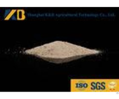 Sprouted Brown Rice Powder Natural Feed Additives Enhance Poultry Nutrition