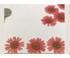 Beautiful Red Dried Flowers Pressed Flower Ornaments For Bookmark Decoration