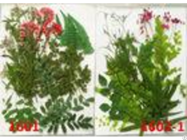 Beautiful Pressed Plant Art Dry Leaves Artwork For Christmas Party Gifts Decoration