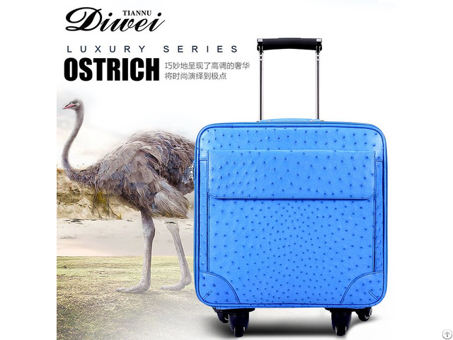 Custom Ostrich Skin Luggage