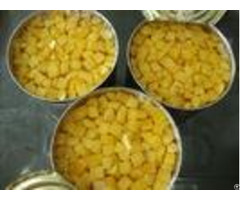 Anti Free Radicals Canned Yellow Peach Fruit Thick Flesh Without Seed