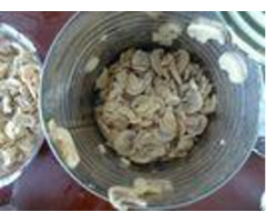 Various Specifications Canned Sliced Button Mushroom No Artificial Additives