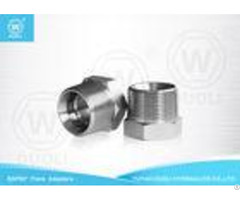 Carbon Steel Hydraulic Nipple Pipe Fitting With Bspt Male And Bsp Female Thread