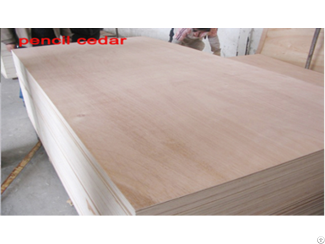 Blockboard For Furniture From Linyi Factory