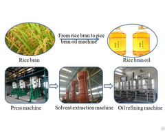 Rice Bran Oil Extraction Plant For Sale