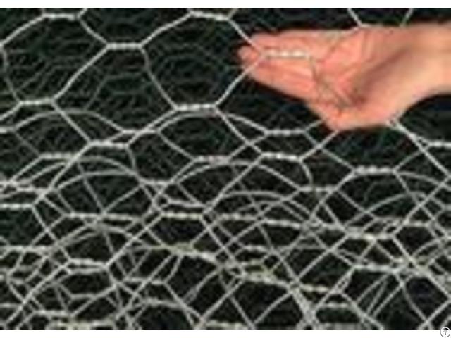 Electro Galvanized Hexagonal Chicken Wire Mesh Netting For Raising Animals
