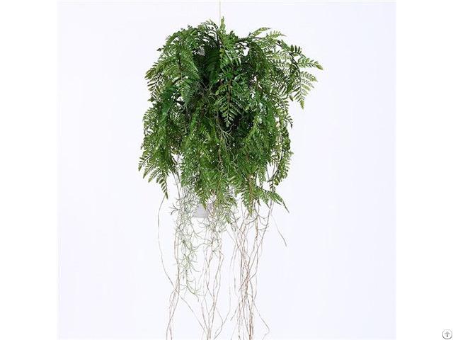 Plastic Hanging Fern Plants