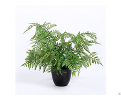 Plastic Fern Bonsai
