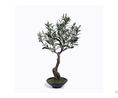 Plastic Olive Tree In Pots