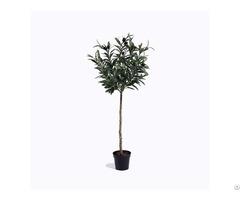 Custom Artificial Olive Tree