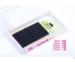 Multilength Velvet Silk Grafted Eyelash Individual Extensions Semi Permanent