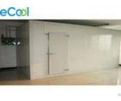 Movable Pur Panel Assembling Mini Cold Storage Below 100 Tons For Frozen Meat