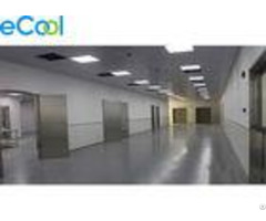 Modern Facility Low Temperature Cold Storage For Pork Processing Factory