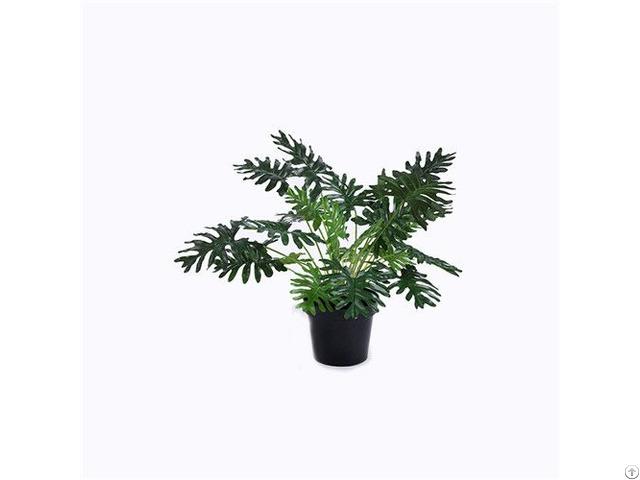 Artificial Split Philo Tree