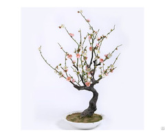 Silk Plum Blossoms
