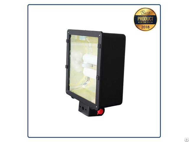 Outdoor Fixture Induction Shoe Box Light