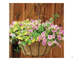 Hanging Basket1