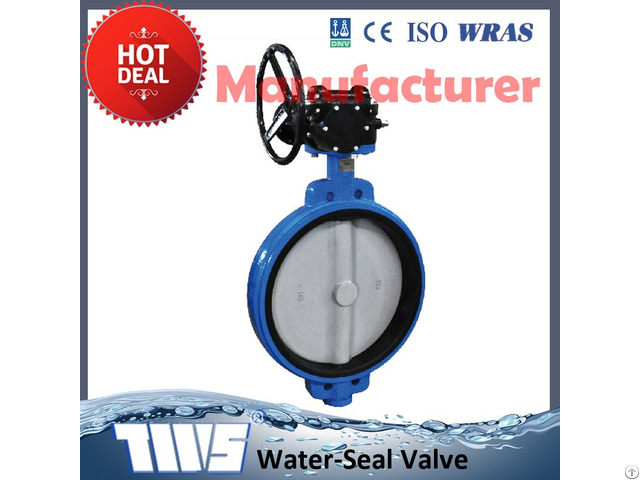 Dn50 Cast Iron Butterfly Valve With Worm Gear