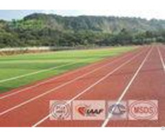 High Performance Athletic Track Surfaces Pu Binder For School Stadium