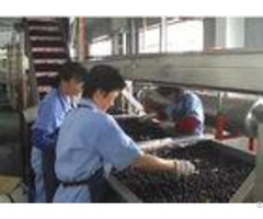 Automatic Small Scale Canning Equipmentcanned Blueberry Production Line