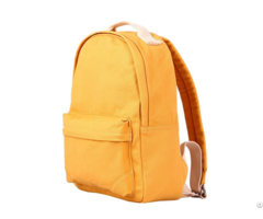 Weekender Laptop Bag School Backpack