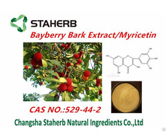 China Bayberry Bark Extract Myricetin
