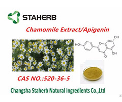 Chamomile Flower Extract Apigenin