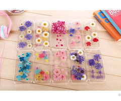 Tpu High Quality Soft Handmade Real Flowers Mobile Phone Cases