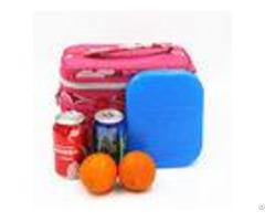 Sap Cmc Refillable Ice Pack Plastic Freezer Gel Packs For Cooler Box