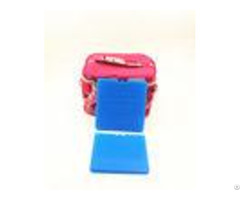 Portable Hdpe Plastic Reusable Ultra Thin Ice Pack For Cooler Cold Packs