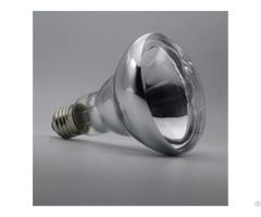 Reptile Basking Spot Bulb R30 R95 150w